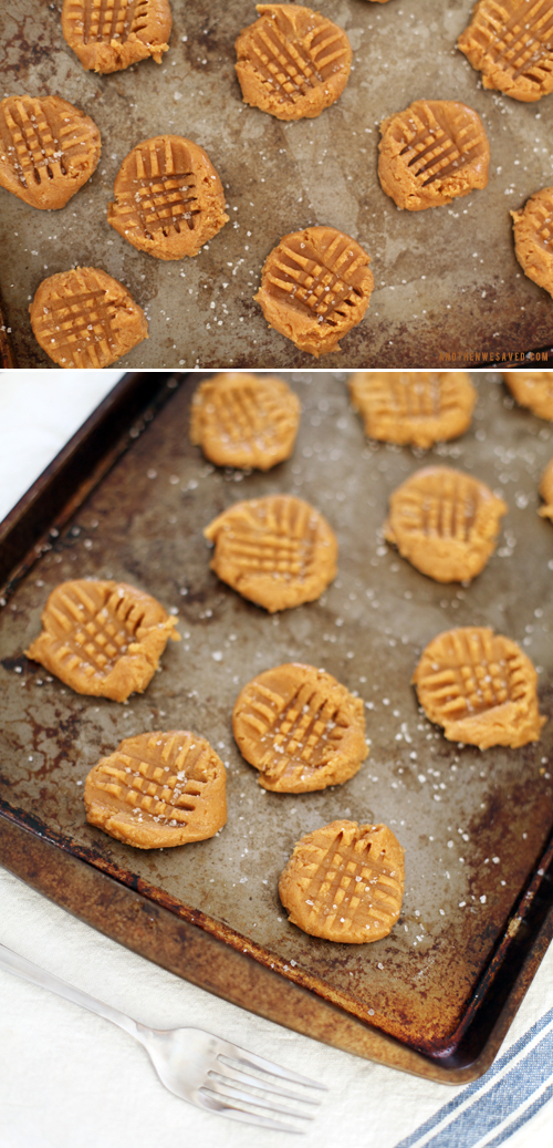 salted peanut butter cookie recipe