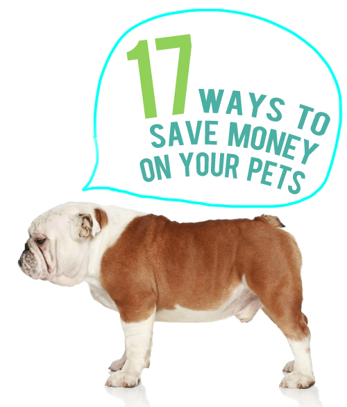 ways to save money on your pets