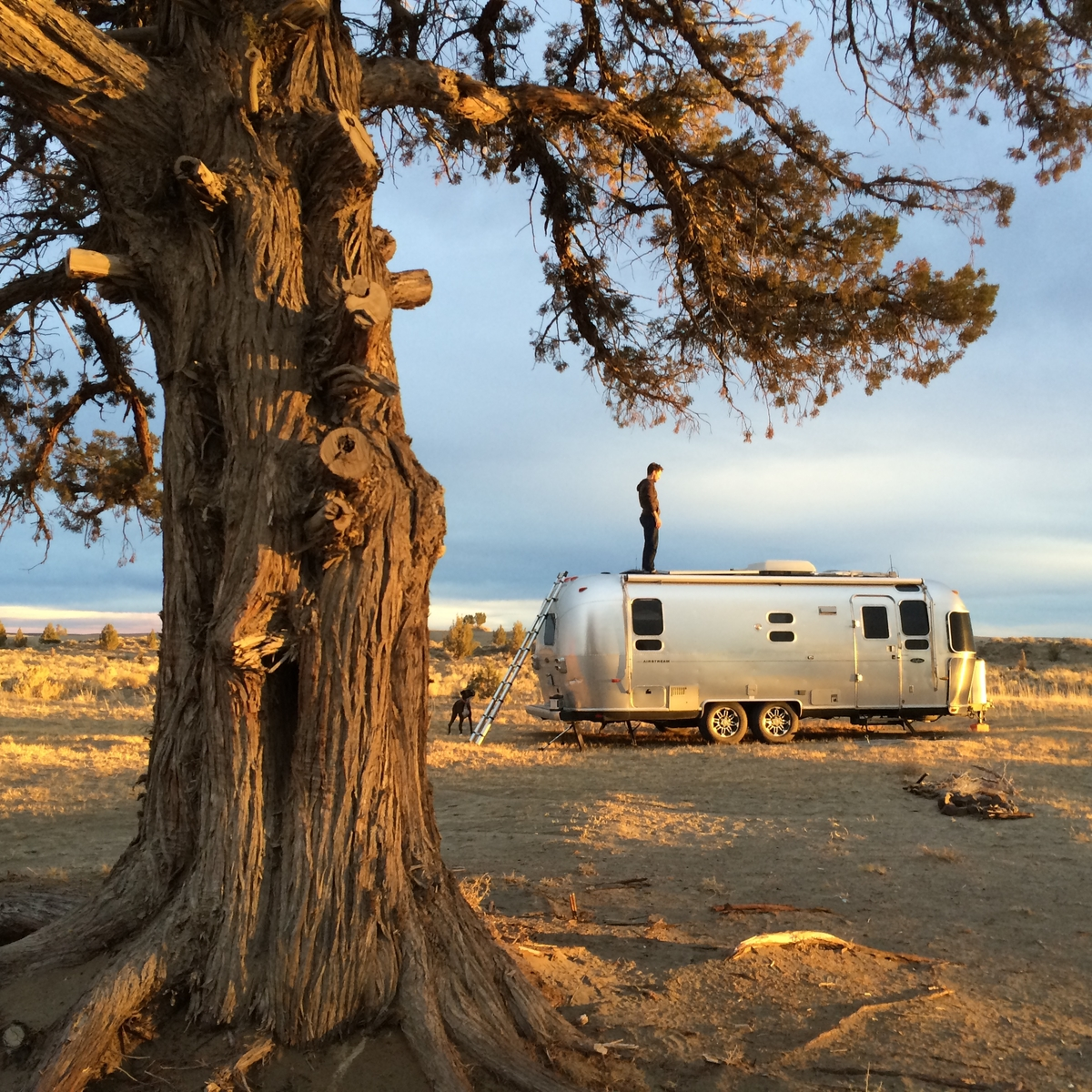 Living Tiny: Seth and Drea's Airstream - Home Tour - And