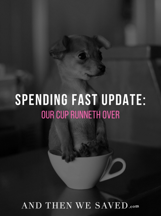 Spending Fast Update: Our Cup Runneth Over | AndThenWeSaved.com