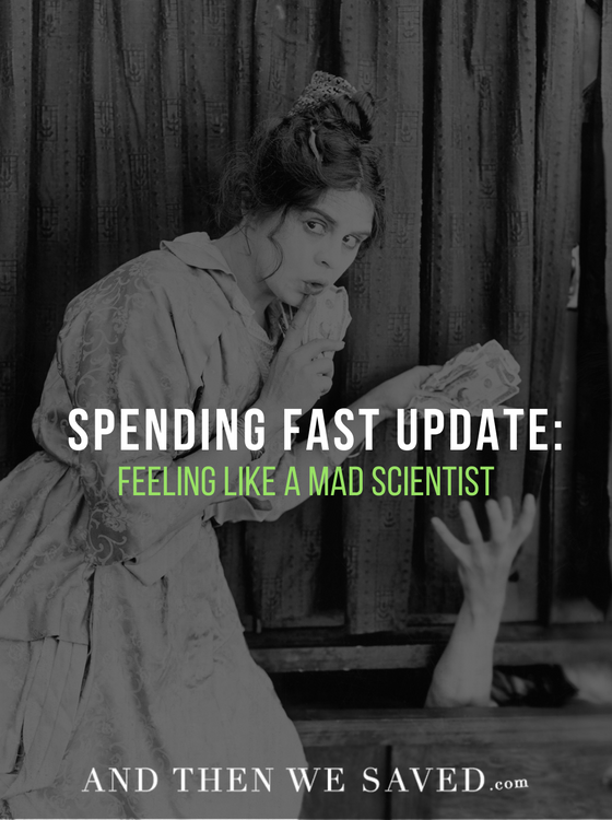 Spending Fast Update: Feeling Like a Mad Scientist