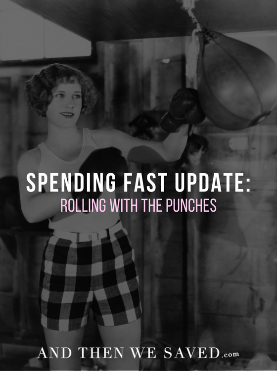 Sarah's Spending Fast Update: Rolling with the Punches | AndThenWeSaved.com
