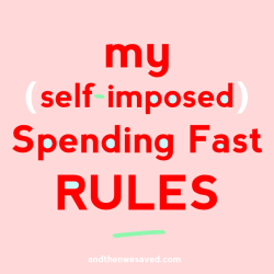 my self-imposed spending fast rules and guidelines andthenwesaved.com