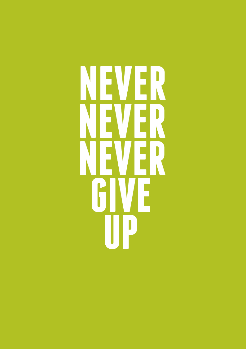 Never Give Up On Life Quotes Never Never Never Give Up  And Then We Saved