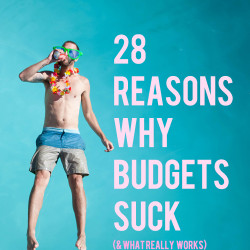 why budgets dont work