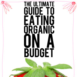 ultimate guide for eating organic on a budget