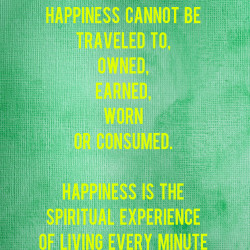 happiness cannot be owned, earned, worn, consumed