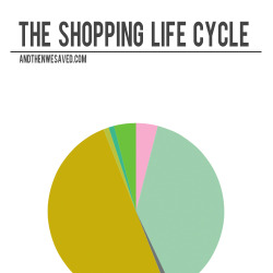 the shopping life cycle andthenwesaved.com