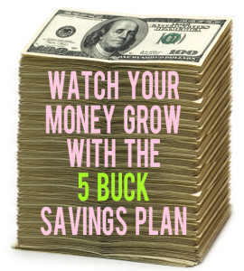 the 5 dollar savings plan andthenwesaved.com