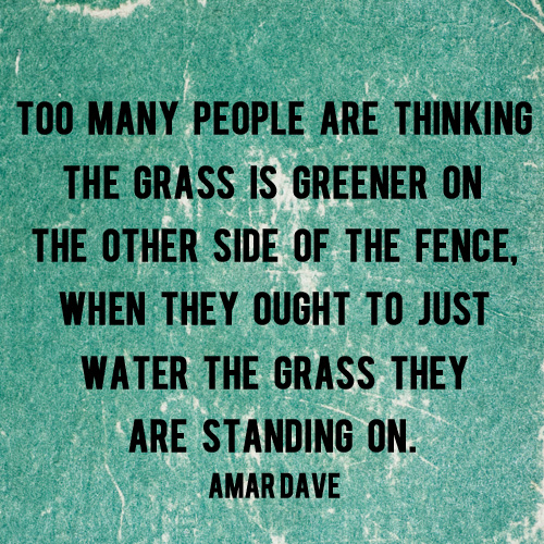 The Grass is Greener on The Other Side of the Fence - And Then We Saved