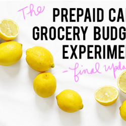 prepaid grocery budget experiment visa andthenwesaved.com