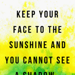 Keep Your Face To The Sunshine | And Then We Saved