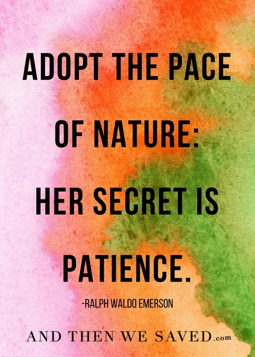 The Secret is patience | Andthenwesaved.com