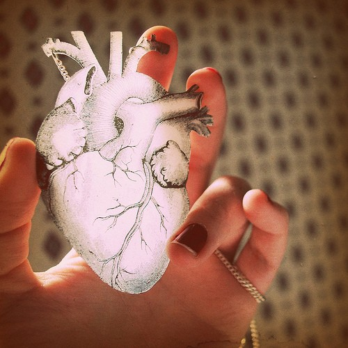 heart illustration with hand