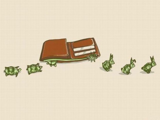 tortoise and the hare wallet cash